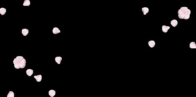 floral-leaves-petals-overlay-bg-layer-im