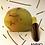 Thumbnail: Ammo