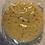 Thumbnail: Sea sponge