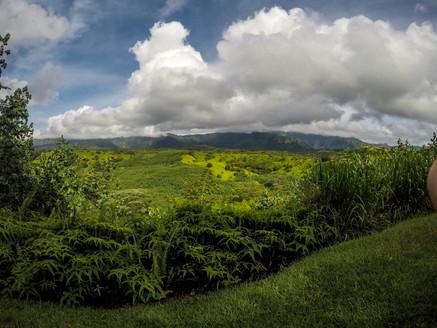 Hawaii Photos-1-64.jpg