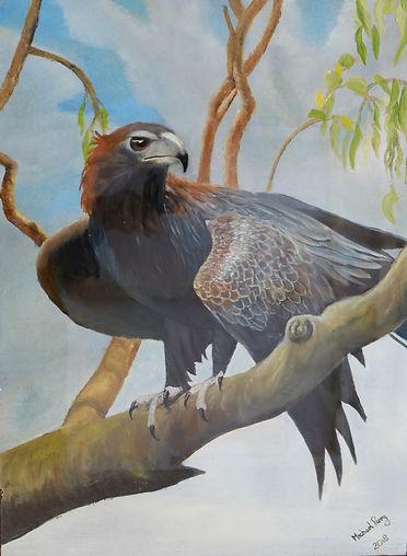 eagle jan.jpg