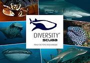 Diversityscuba