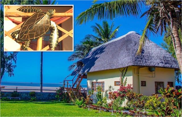 beach-house-accommodation-vilanculos-mozambique