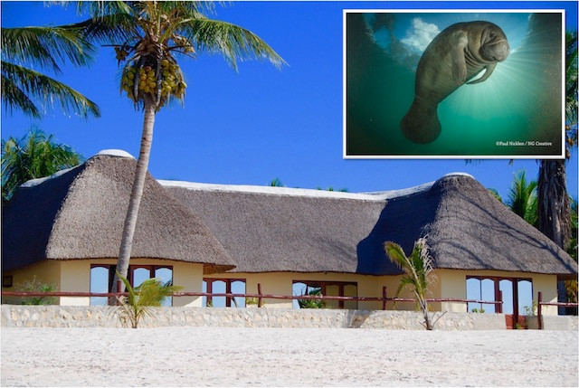 Vilanculos-accommodation-beach-villa-dugong