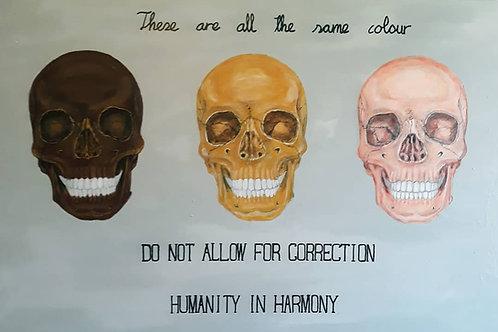 HUMANITY IN HARMONY