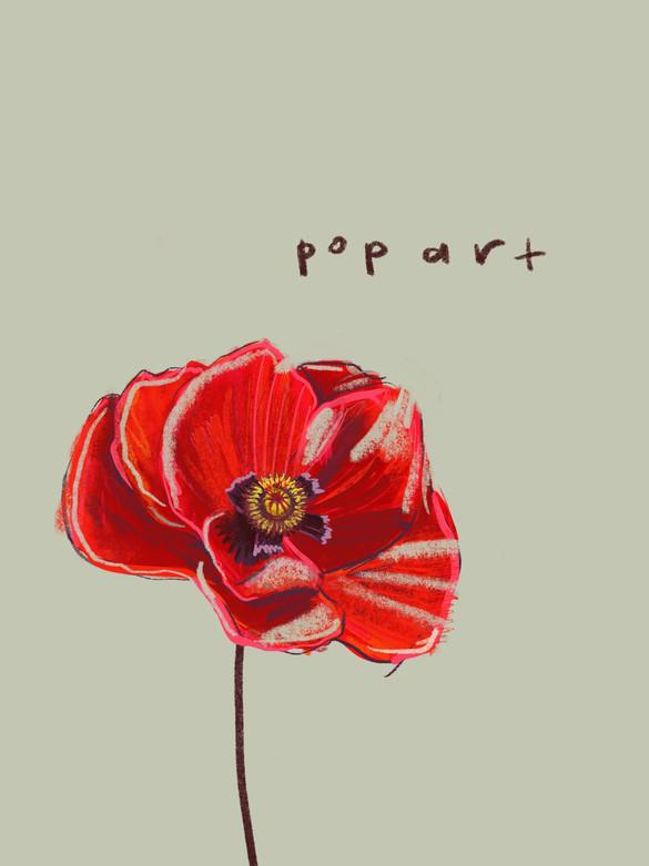 Poppy_2.jpg