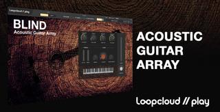 Acoustic Guitar Array Banner.jpg
