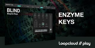 Enzyme Keys REC.jpg.png