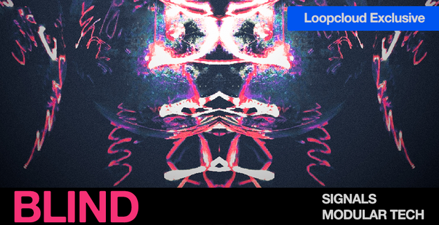 Signals LCEX Banner.png