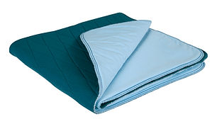 blue-e bedpad.jpg