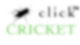 TMS Click Cricket LOGO_edited_edited.png