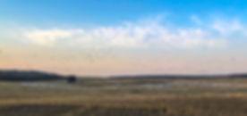 Prairie Limits Field Landing