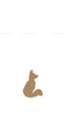 Asset 35wyldrW.png