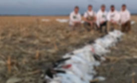 Central Kansas Snow Goose Hunt - Big Kansa Outdoors