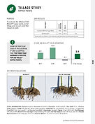 2019 Becks PFR - Ohio Corn Tillage Study