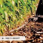 360 Y-DROP Product Loop