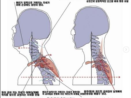 [일산자세교정,일산체형교정] 목 안정화 훈련 -웰니스포스처-