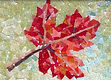 Red maple logo with watercolor sponge fo