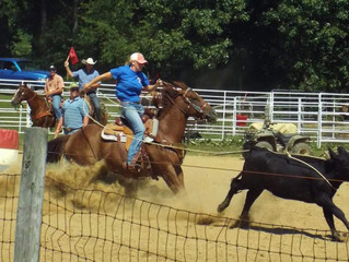 Roping Lessons Rescheduled