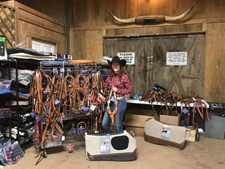 Spring Saddle Fitting Clinic