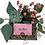 Thumbnail: The Pink Box