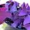 Thumbnail: Oxalis Triangularis (Purple Shamrock)