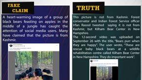Fake News #F180 - Bears chomping on apples in Kashmir