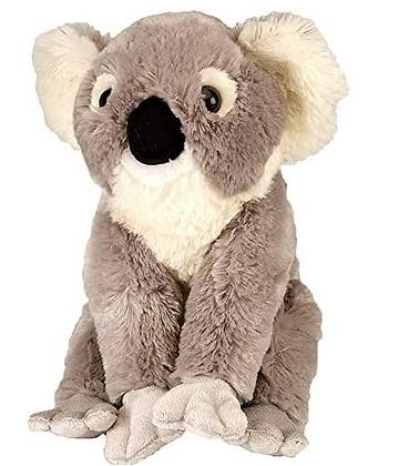 """Wild Republic Koala (12"""")"""