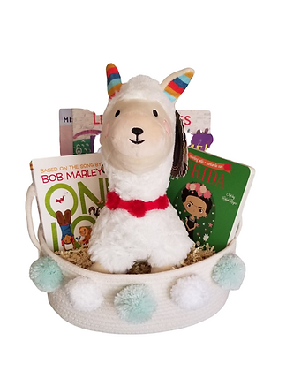 Deluxe: Braided Basket (Books & Plushie Not Included)