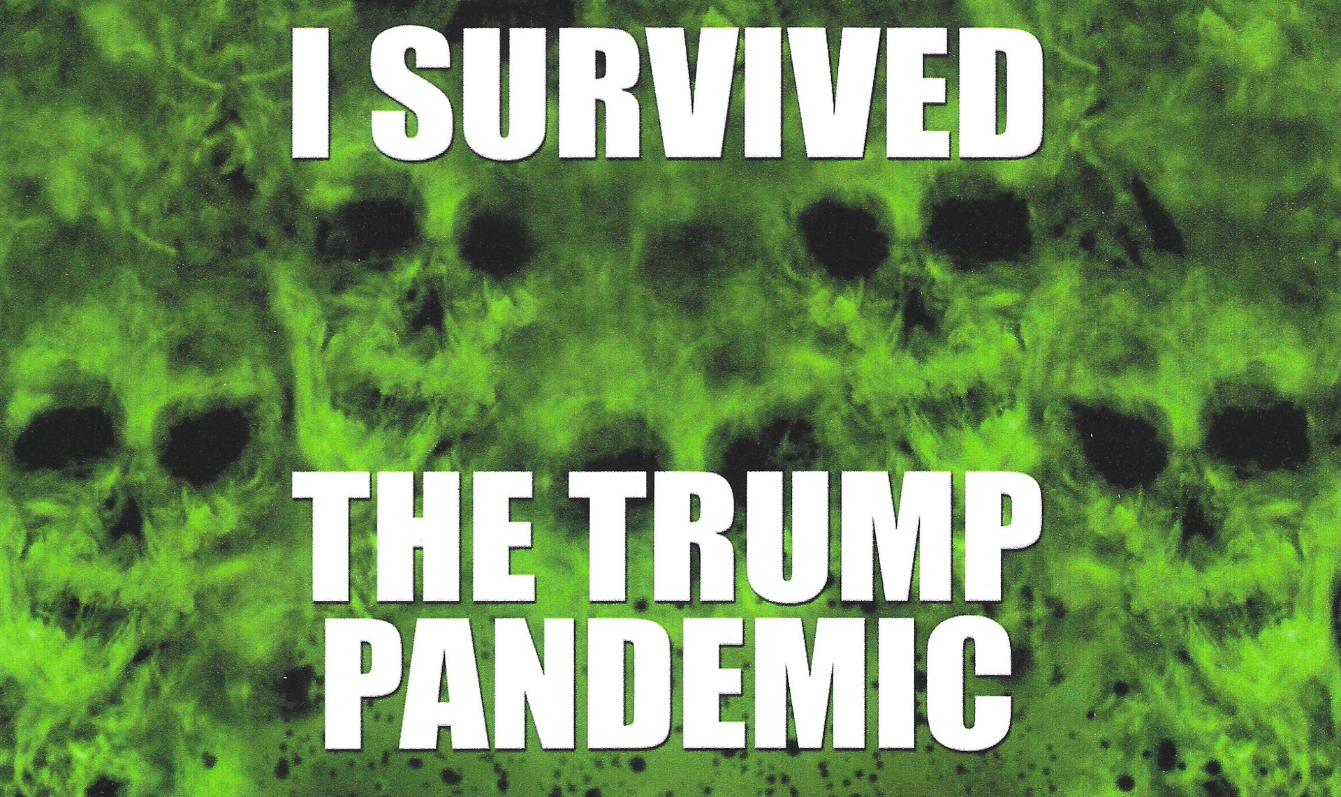 I Survived the Trump Pandemic
