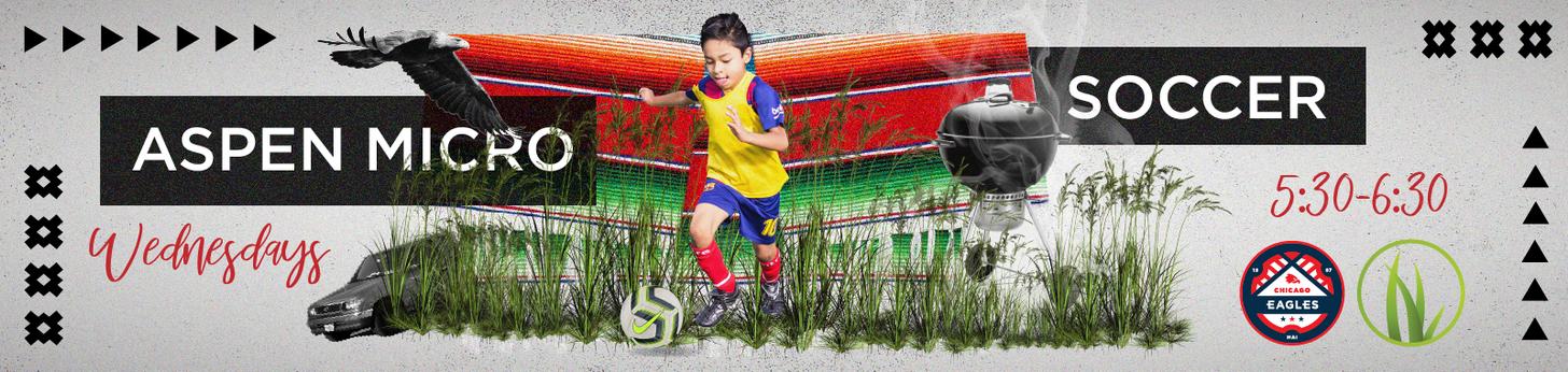 Aspen Spring Micro Soccer