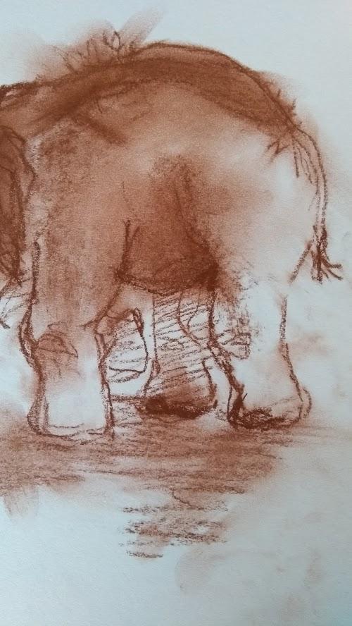 schets olifant 3