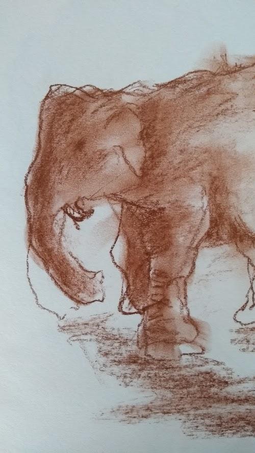 schets olifant 8