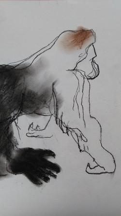 schets gorilla 1
