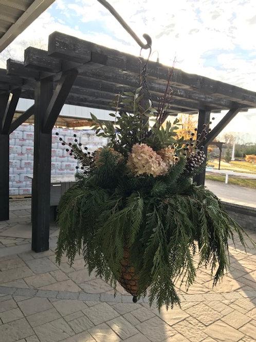"""Blooming Christmas 12"""" Hanging Basket"""