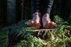 forest feet