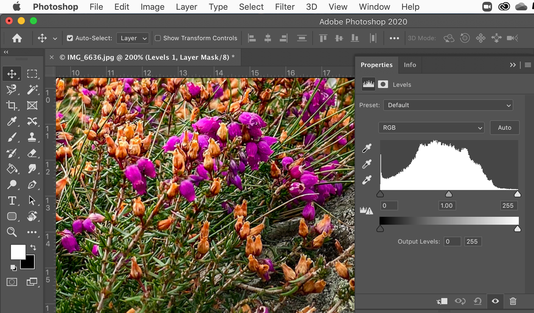 Photoshop (for Lightroom users)