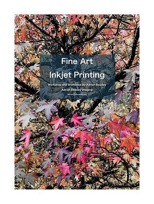 Fine Art Inkjet Printing Workbook