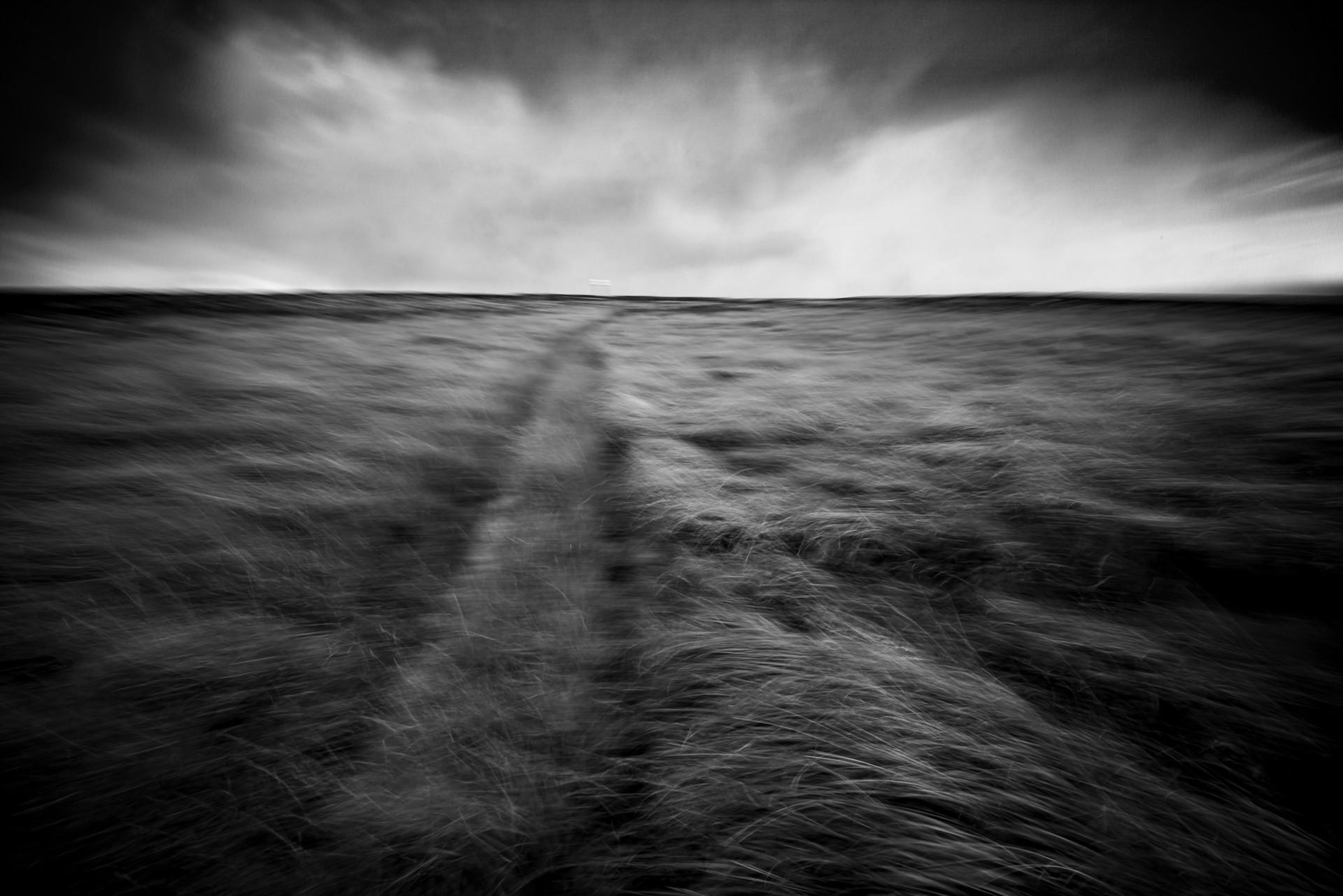 Adrian Lundy.jpg