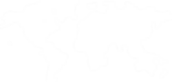 CHAIN LOGOS_5-world-WHITE-dot-map50%.png