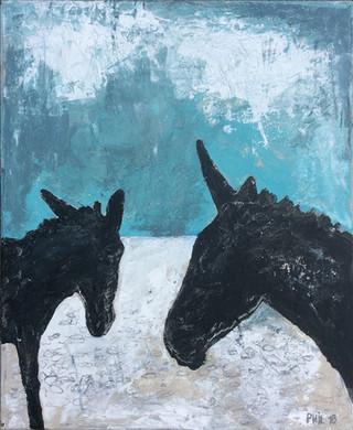 2 ânes Karpathos