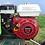 Thumbnail: Motorhacke FLORA 55 HONDA 5,5 PS 50 cm Arbeitsbreite