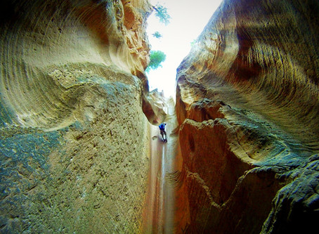 On The Road To Birch HOllow: Zion Slot Canyon Experience