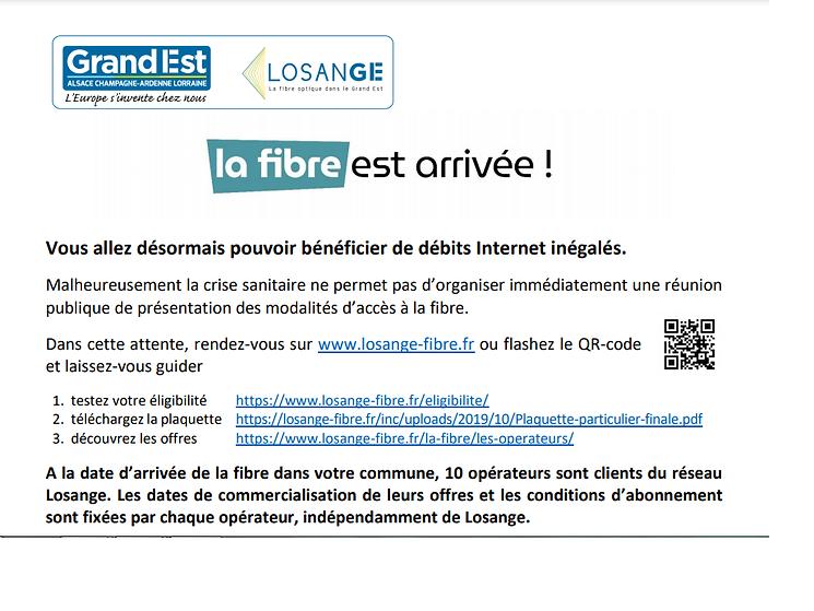 fibre1.png