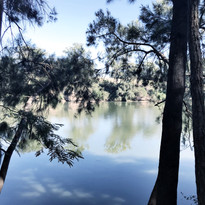 The Hawkesbury river from the campsite