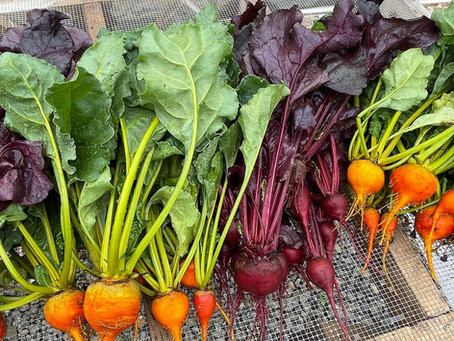 Local Farmers Markets…Good for your community and your taste buds