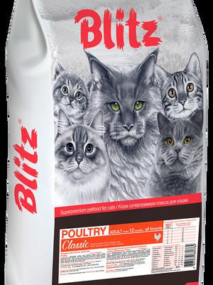 blitz для котов.png