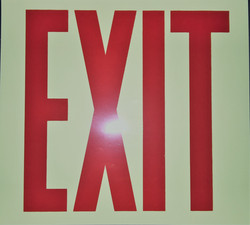 #374  10x9 Vinyl Glow in the Dark-Exit
