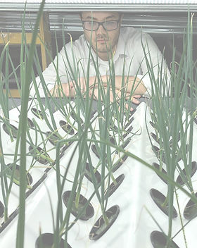 DY%20looking%20at%20plants_edited.jpg