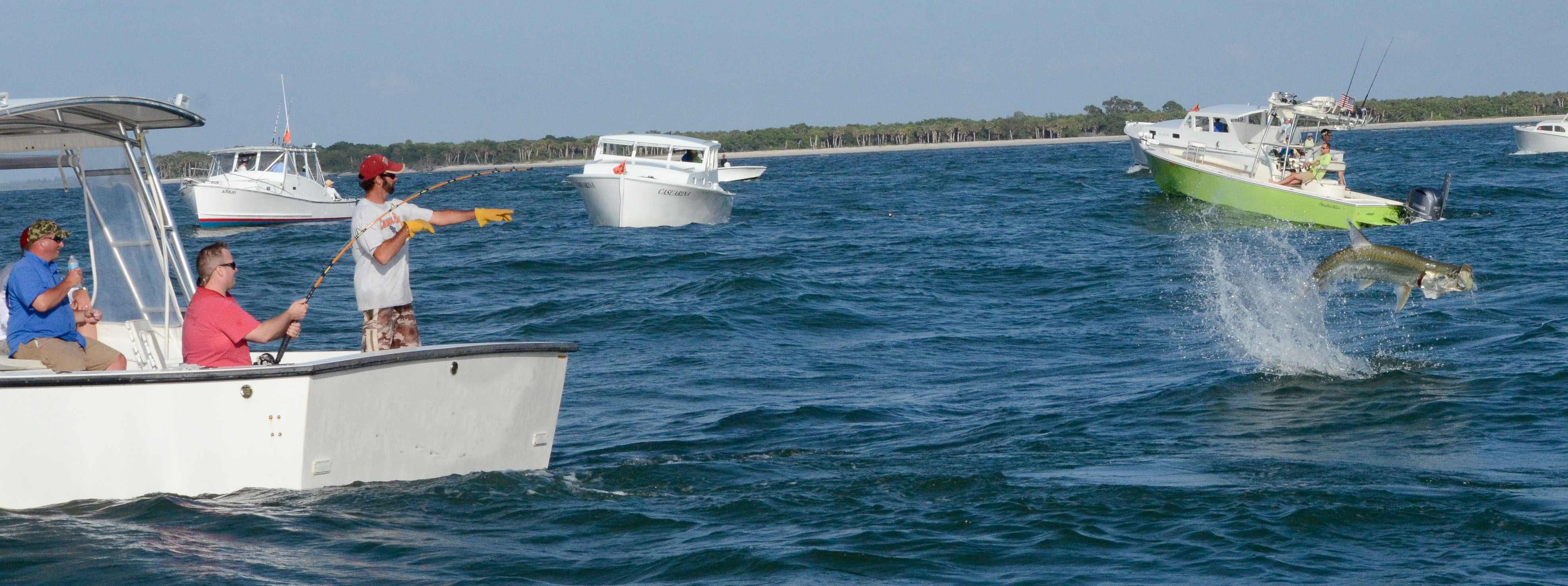 Boat with Tarpon